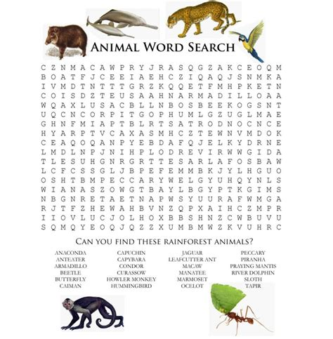 printable animal word scramble animal word scramble for kids kiddo shelter