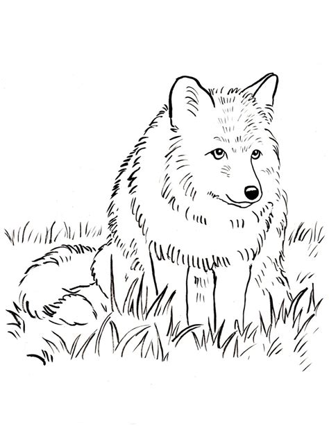 fox coloring book free coloring pages and reference pictures bell