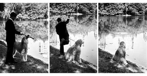 libro elliott erwitts dogs elliott erwitt y mientras tanto page 2