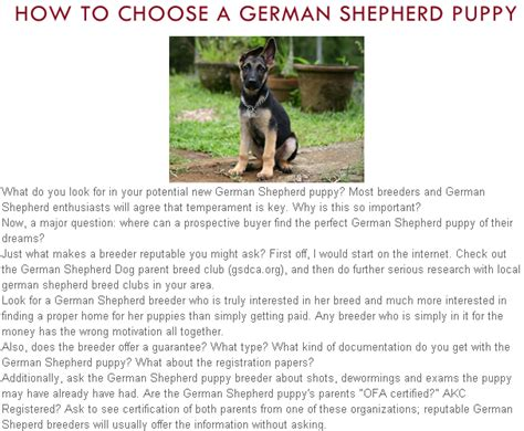 german shepherd puppy tips how to a german shepherd puppy breeds picture