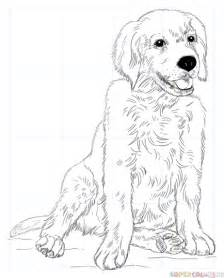 draw golden retriever puppy how to draw a golden retriever puppy step by step drawing tutorials