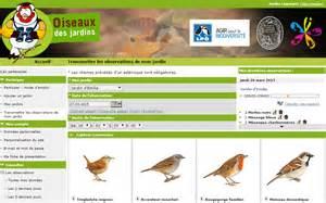 observez les oiseaux comme un scientifique eveil et nature