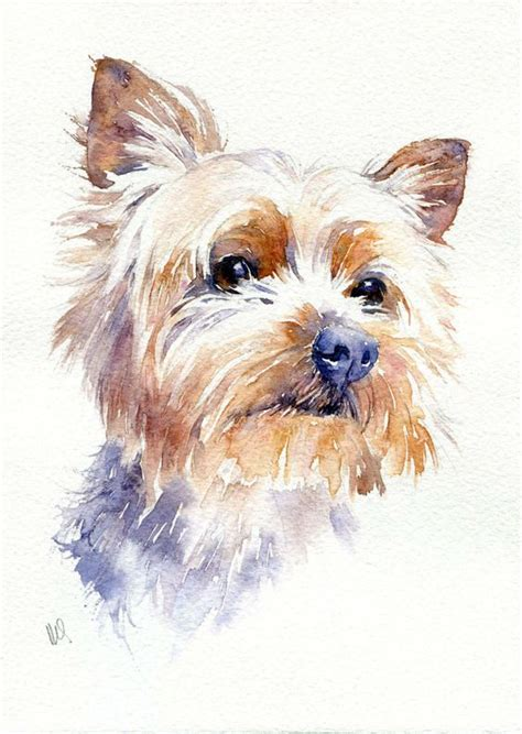 original watercolour pet painting yorkshire terrier dog