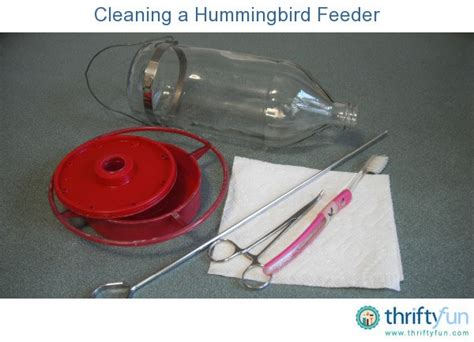 cleaning a hummingbird feeder thriftyfun