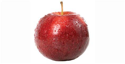 fruit ripening fruit ripening ethylene management workshop hort news