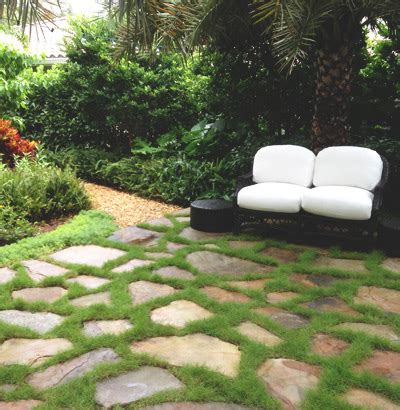 landscaping company in miami hardscape services in miami landscaping company miami