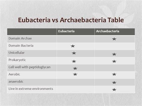 archaebacteria vs eubacteria venn diagram eubacteria and archaebacteria venn diagram 95078