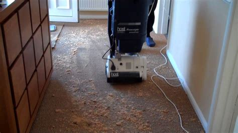 host rug cleaner host carpet cleaner machine carpet vidalondon