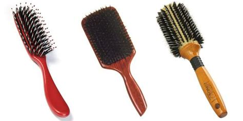 Type Of Hair Brushes by Types Of Hair Brushes And Combs Reed