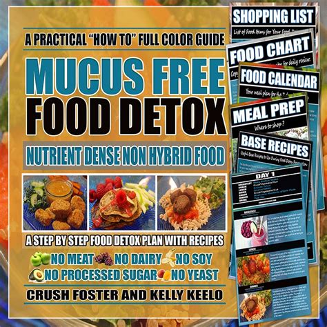 Dr Sebi Detox Diet by Mucus Free Food Detox Ebook Alkaline Eclectic Digital Store