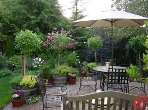 arbusti da terrazzo il giardino in fioriera 18 alberi e arbusti in vaso
