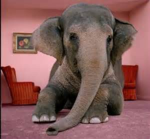 Elephant In The Living Room by The Elephant In The Living Room Tobacco Harm Reduction