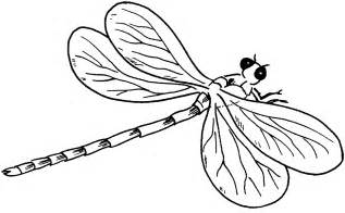 dragonfly coloring pages free printable dragonfly coloring pages for