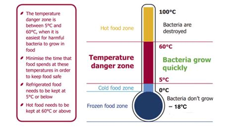 at what temperature should storage rooms be kept 7 food safety tips live better