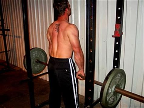 Rack Pull Benefits by Rack Pull Benefits Cosmecol