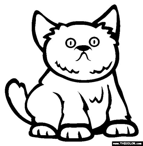 ragdoll cat coloring page birman animal coloring pages ragdoll breed cat online