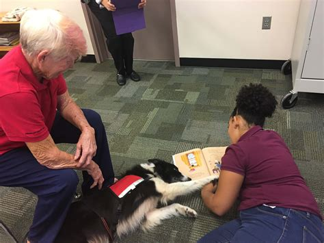 your puppy to be a therapy therapy dogs greater fort myers club