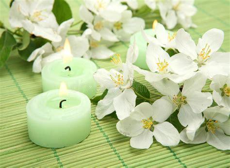 candele fiori finest fiori e candele immagine stock immagine di