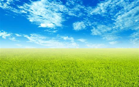 sky  grass wallpaper wide screen wallpaper pkk
