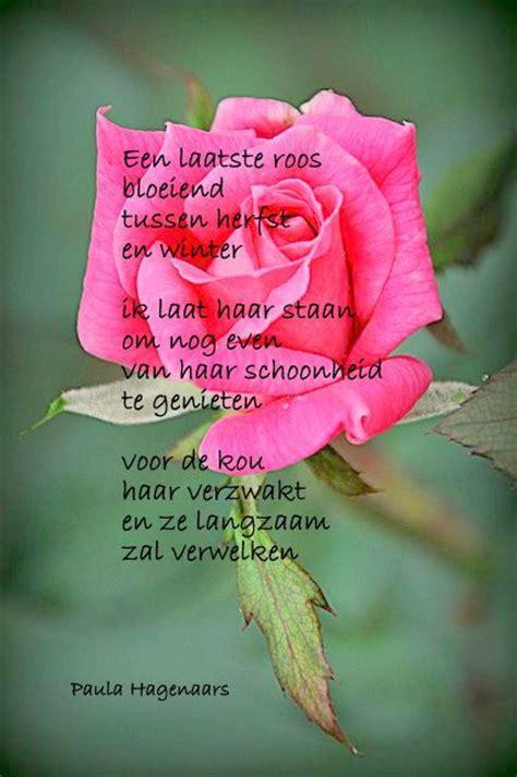 gedicht toon hermans bloem 1000 images about geurende gedichten en spreuken on