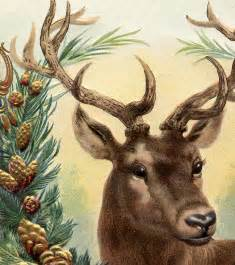 Fairy Garden Craft - free vintage christmas image deer the graphics fairy