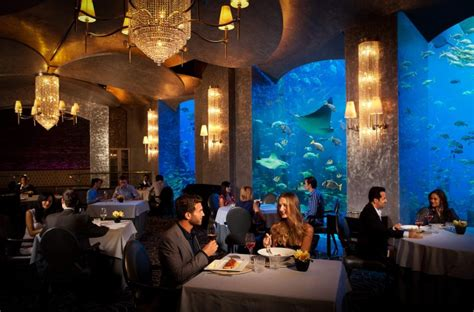 atlantis bahamas underwater rooms 7 underwater hotels that will make you jump into the