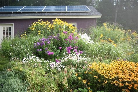hardscaping 101 solar panels pros and cons gardenista