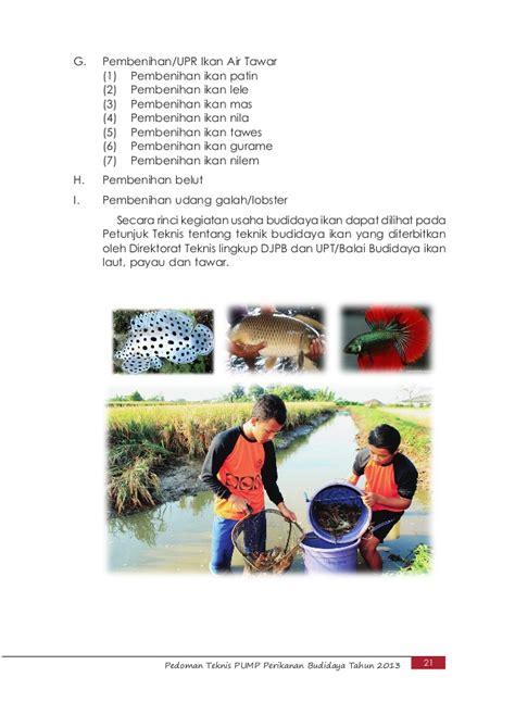 Bibit Ikan Bawal Bintang isi pedoman teknis 2013 13 juni terbaru