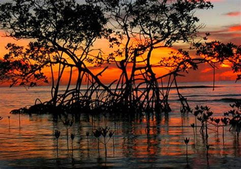 imagenes de paisajes wikipedia paisajes de guatemala locuraviajes com
