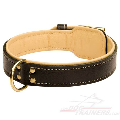 luxury collars royal nappa made leather collar code c443 c443 1073 padded collar 49