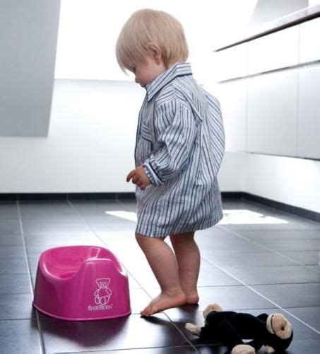 how to potty a fast and easy 25 best ideas about potty books on potty toilets how