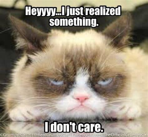 Frown Cat Meme - 313 best images about put your best frown forward grumpy cat grumpy cat 2015 wall calendar