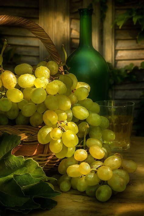 imagenes de uvas naturales las 25 mejores ideas sobre uvas verdes en pinterest