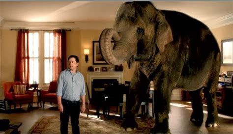 the walk the elephant in the room