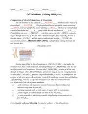 cell membrane coloring worksheet answers cell membrane coloring worksheet name date period cell