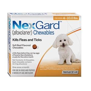 nexgard for dogs 4 10 lbs merial pet dental month just b cause