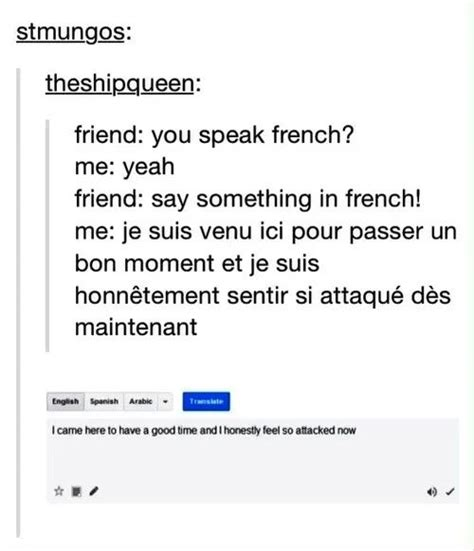 French Language Meme - best 25 google translate funny ideas on pinterest