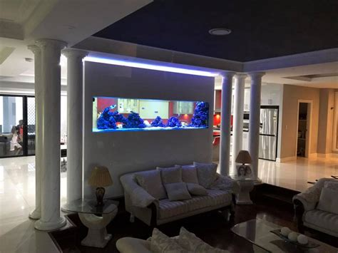aquarium design sydney custom luxury home aquarium aquarium architect custom