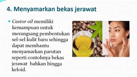 Minyak Jarak Murni jual castor murni cold pressed minyak jarak murah