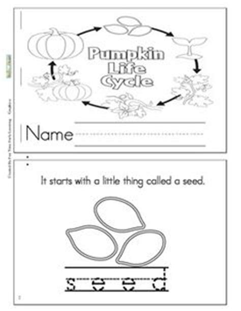 life cycle of a pumpkin coloring page 14 best images of life cycle of a flower worksheet plant