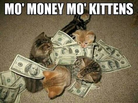 Mo Money Meme - mo money mo kittens memes and comics