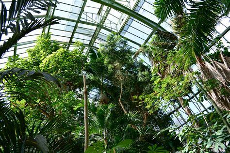 Formidable Faire Un Jardin D Hiver #9: Dsc_0861.jpg