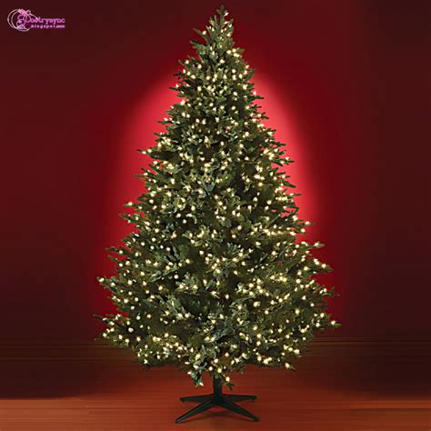 christma tree lights tree light ideas bombadeagua me