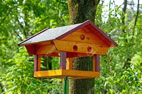 bird feeder woodworking plans 100 cool bird house plans simple tree house plans