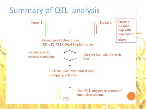 statistical genomics linkage mapping and qtl analysis books mapping and qtl