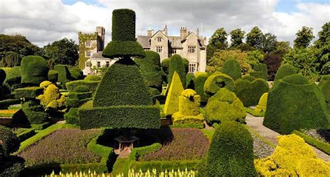definition topiary the of topiary garden world