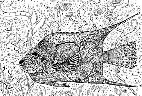 coloring pages fish for adults coloring page sea fish 11