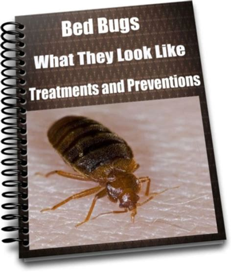 bed bugs in books bed bugs what they look like treatments and preventions by
