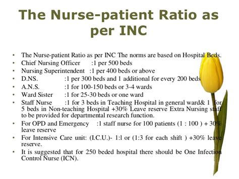 ratio of nurses to patients in nursing homes home review