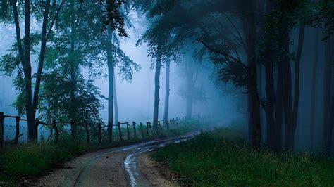 el bosque oscuro the pa 237 s por carretera en el bosque oscuro fondos de escritorio hermosos paisajes widescreen para